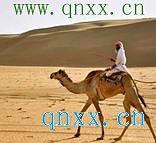 初中生学习阿拉伯语之语音学习01